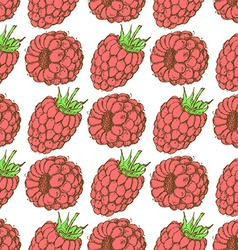 Sketch tasty raspberry in vintage style vector