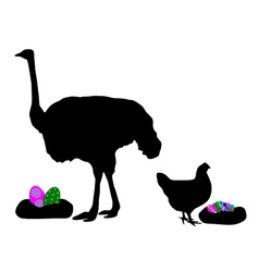 Hen and ostrich with easter eggs vector