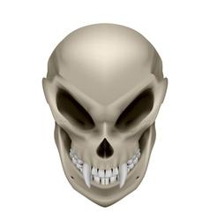 Skull of a mutant vector