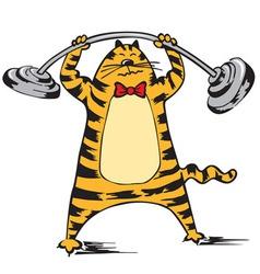 Cat raises the barbell vector