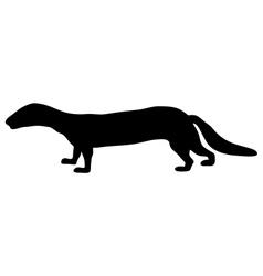 Polecat silhouette vector