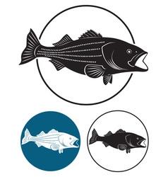 Sriped bass vector