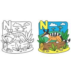 Little numbat coloring book alphabet n vector