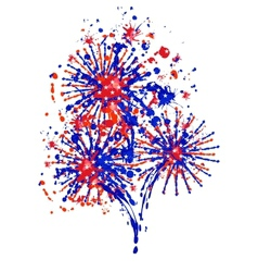 Firework independence day vector