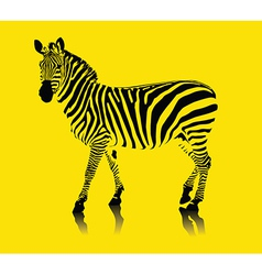 Yellow zebra vector