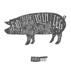 American cuts of pork scheme vector