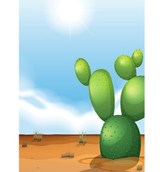 A cactus plant in the desert vector