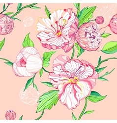 Seamless peony background vector