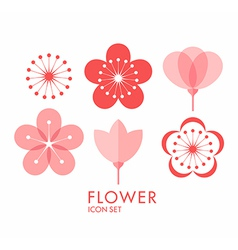 Flower icon set sakura vector