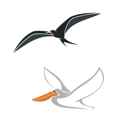 Albatross and pelican birds symbols vector