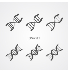 Dna icons set vector