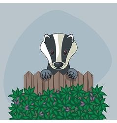 Cute badger vector