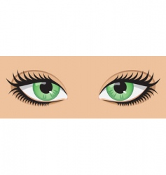 Green eyes vector