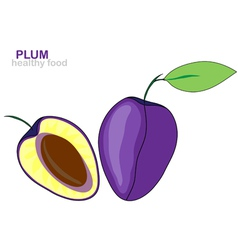 Plum fruit vector