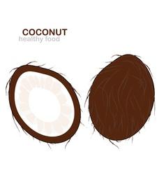 Coconut fruit vector