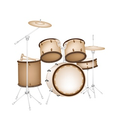 A beautiful drum kit on white background vector