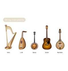 Five musical instrument strings vector