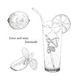 Lime and mint lemonade ink sketch set vector