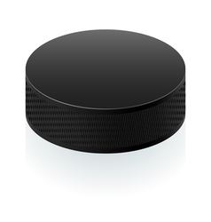 Realistic black puck vector