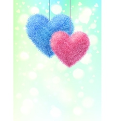 Pink and blue fluffy hearts pair on light shining vector
