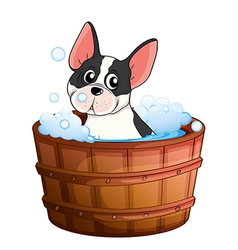 A dog taking a bath vector