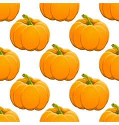 Pumpkin seamless pattern on white vector