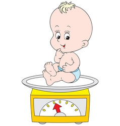 Small child weighed on scales vector