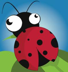 Lady bug vector
