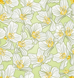 Seamless texture jasmine spring background vector