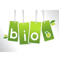 Bio hanging cards vector