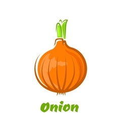 Brown bulb onion with green sprouts vector
