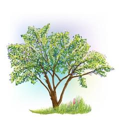 Tree grass spring vector