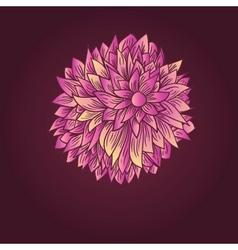 Peony flower vector