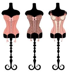Vintage corsets set vector