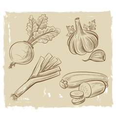 Picture of vegetables vector
