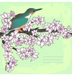 Branch of hand drawn cherry blossom with the bird vector