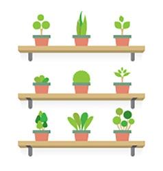 Pot plants gardening concept vector