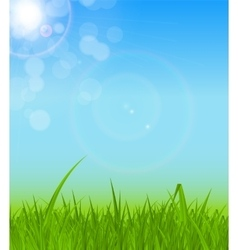 Natural sunny background vector
