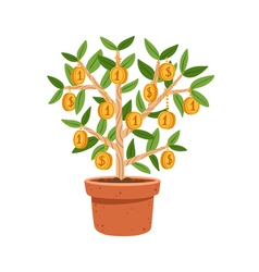 Money tree vector