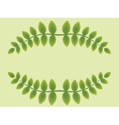Leaf frame vector