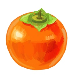 Picture of fruit persimmon vector