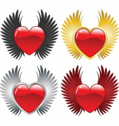 Winged hearts vector