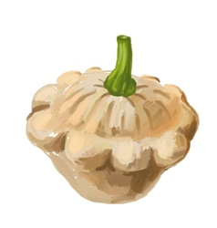 Picture of scalloped custard squash vector