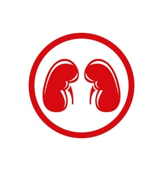 Human kidney single flat icon symbol vector