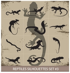 Big collection of reptiles silhouettes vector
