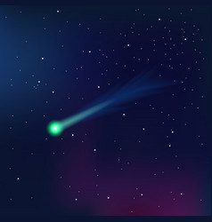 Comet on a starry sky vector