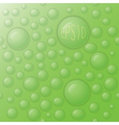 Drops on a green background vector