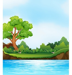 River view vector