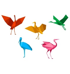 Cranes storks and herons birds vector