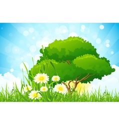 Green grass with tree vector